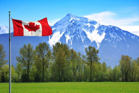 dịch vụ xin visa đi canada